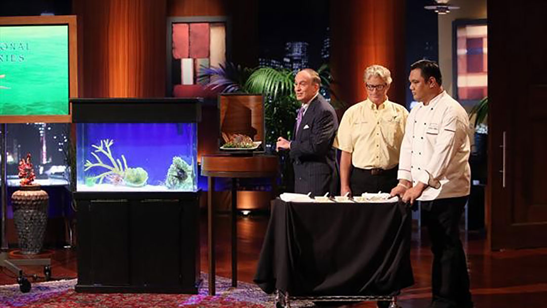 Traditional Fisheries Lionfish miss Shark Tank Bite No Deal