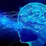 感情の仕組み、脳の3つの場所が関係していた!