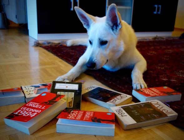Yeti toimi Kirsin Book Clubin vartijana.