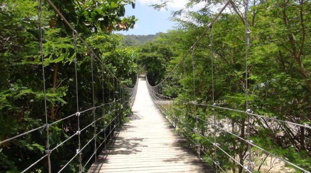 Hanging bridge DomRep Kirsten Bukager