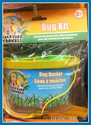 Bug Kit- Dollar Store Boredom Busters.