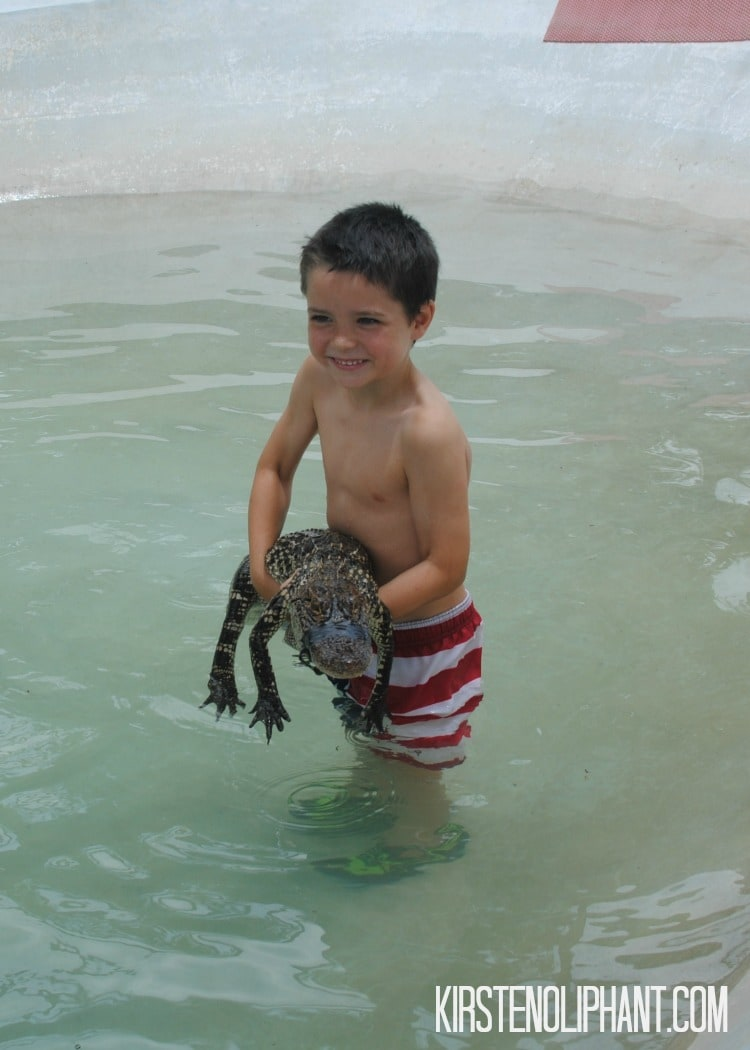 The hands-on experience at Gator Country makes it a great stop for kids.