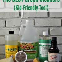 The Best Green Cleaning Products PLUS How to Use Them!