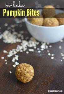 Delicious, nutty, protein-filled pumpkin spice bites. Yum!