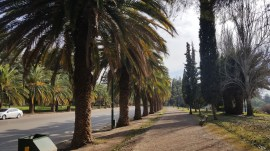 Pictures from the beautiful Parque General San Martin