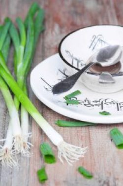 forc3a5rslc3b8g-iransk-yoghurtsup