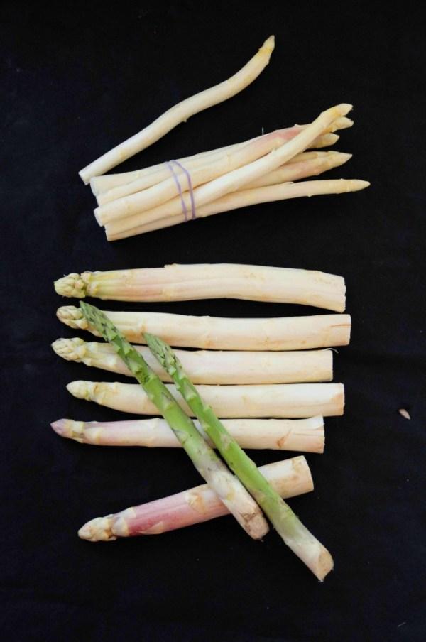 asparges.2