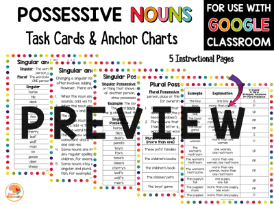 Possessive Nouns Task Cards and Anchor Charts Activities PREVIEW