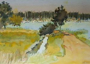 Swanwick to Warsash Footpath in Summer