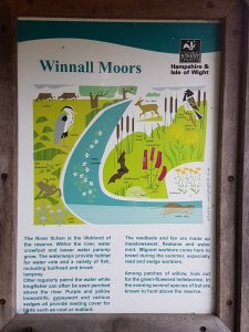 Out and about painting at Winnall Moors