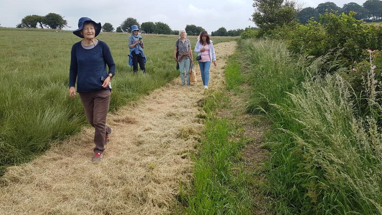 artists walking through a meadow