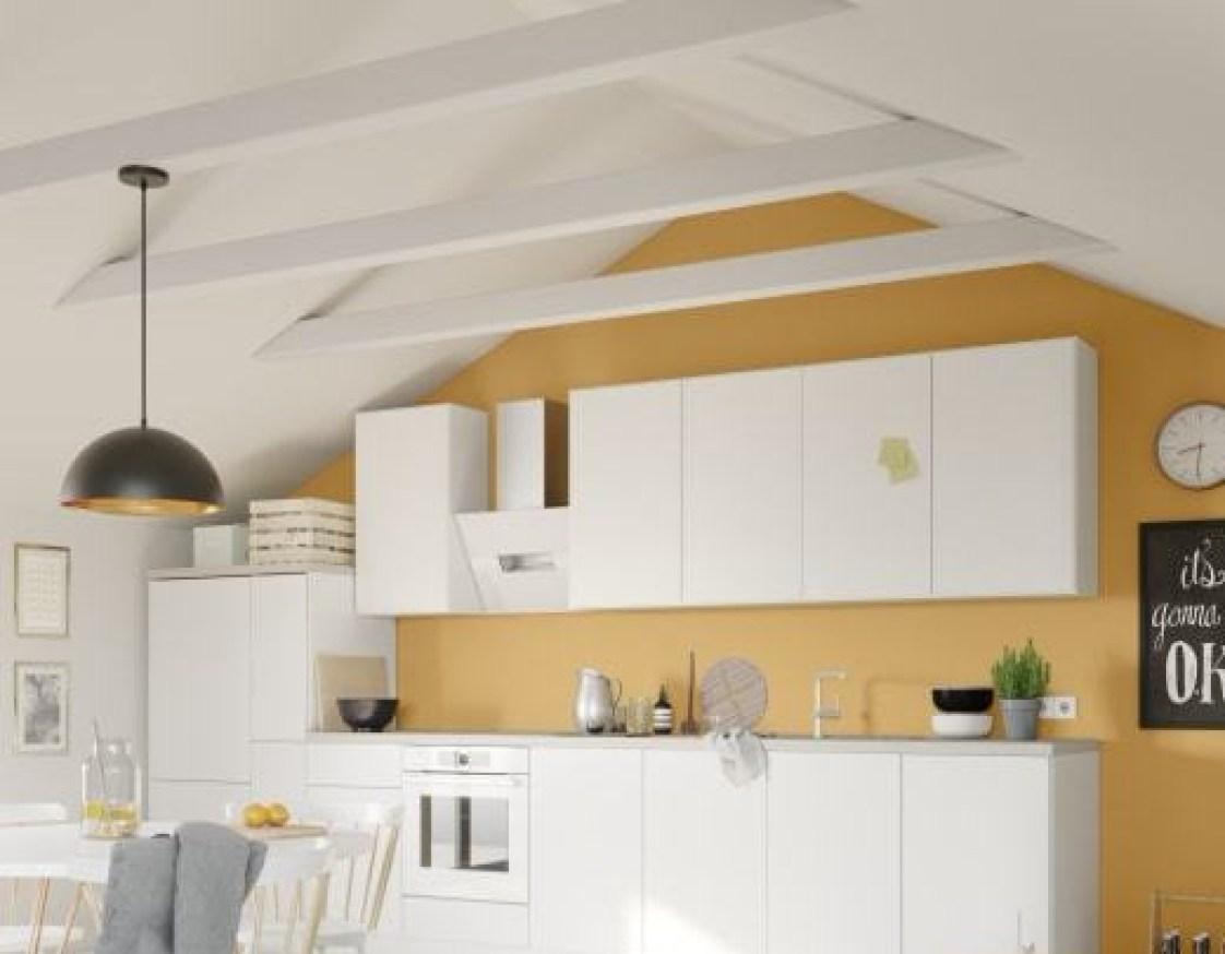 white kitchen lionshome