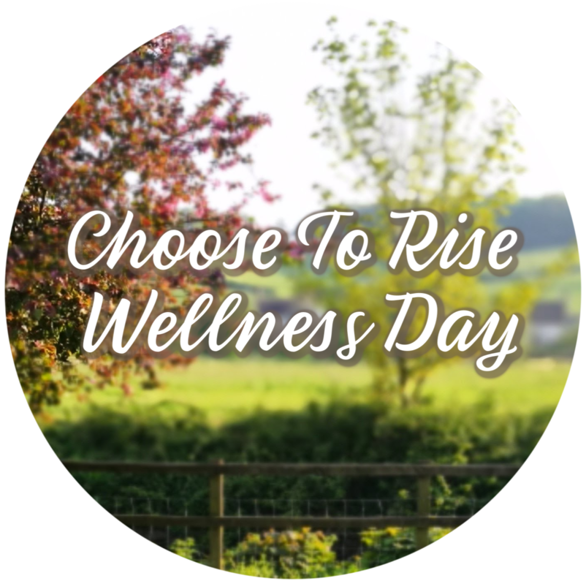 Choose To Rise Wellness Day