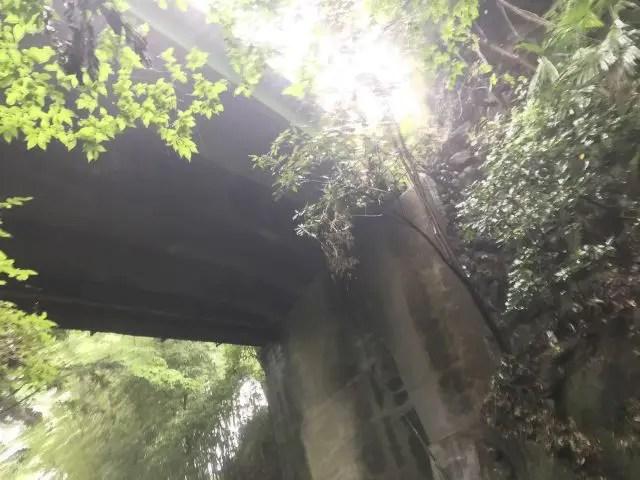 梅田橋を下から仰ぐ