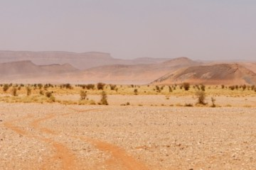 kisah sahabat salman al-farisi
