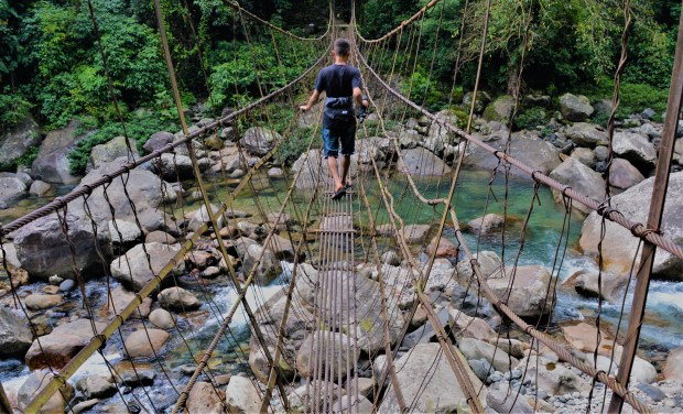 living root bridge in Meghalaya are handmade from the aerial roots of rubber fig trees by the Khasi and Jaintia tribes