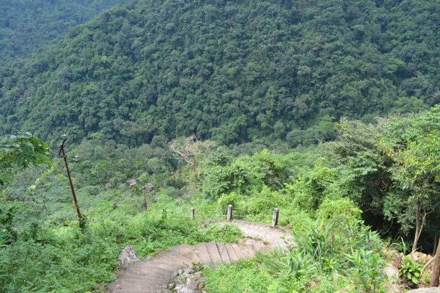 Steps leading to the village of Nongriat. living root bridge in meghalaya