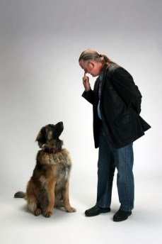 Watch Me Kiss Dog Training