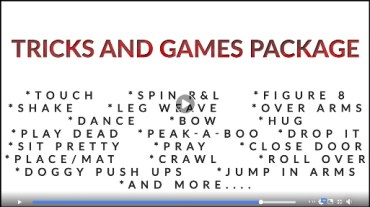 Tricks and Games Package Video