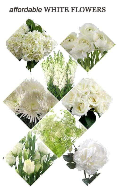 Affordable White Flowers for Your Wedding