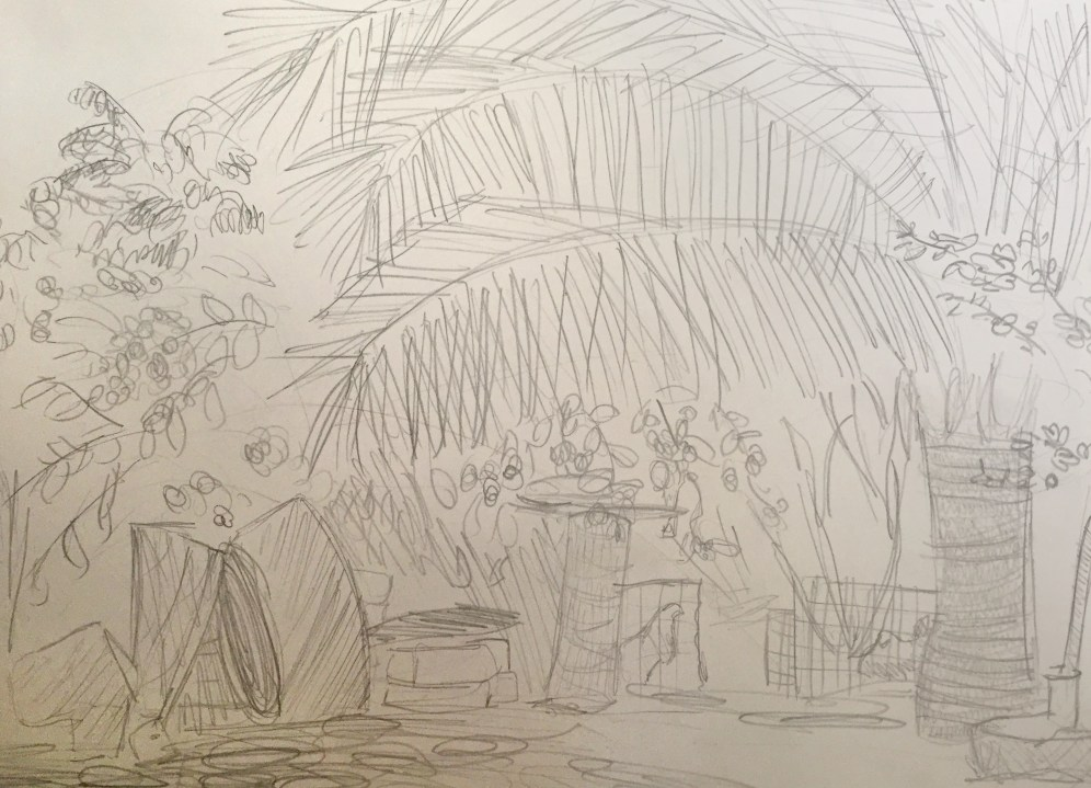 Drawing of backyard in Chacahua Mexico by Camille Willis