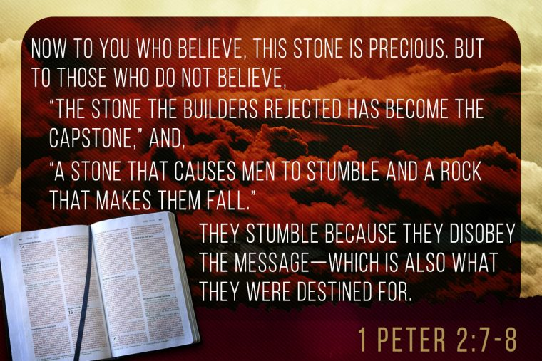 rejected the stone