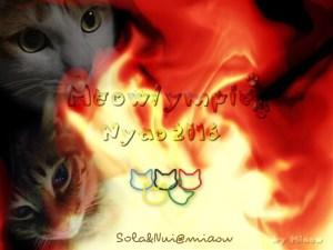 Meowlympic-SolaNui