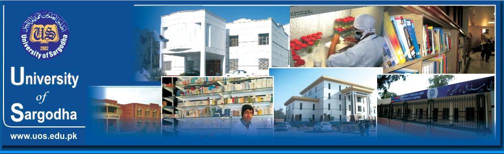 Sargodha University UOS BA BSc Date Sheet 2019 uos edu pk