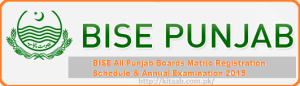Punjab Matric 10th Class Result 2020 Announced For All Boards
