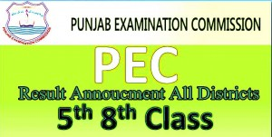 PEC Punjab 5th Class Result 2017 Enter Your Roll Number or Name Get Your Result 2017