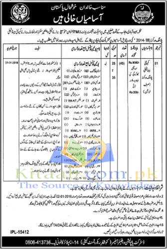 Govt of Punjab PMU Population Welfare Department PWD Layyah Jobs December 2015-16 Application Form Download