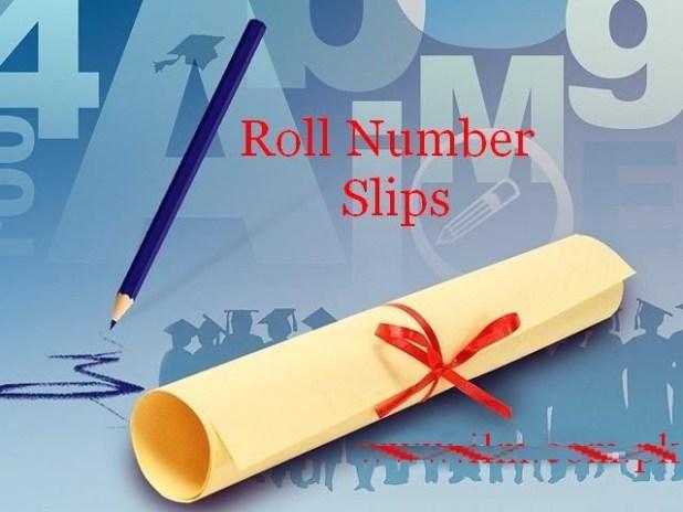 PEC Multan Board Download Roll Number Slips For 5th 8th Class 2019 Khanewal Lodhran Vehari District