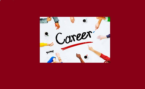 Career Options After MS or MPhil Programs