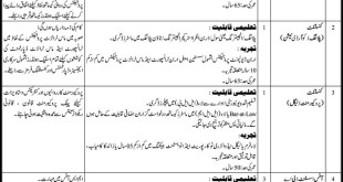 Sindh Mass Transit Authority SMTA Jobs Application Form Eligibility Criteria