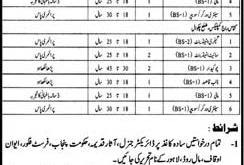 Punjab Archeology Department Jobs 2021 Application Form Test Date & Schedule