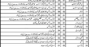 Balochistan Health Department Jobs 2021 Application Form Download Written Test Date Result Merit List