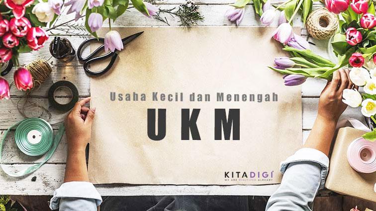 Perkembangan UKM di Indonesia