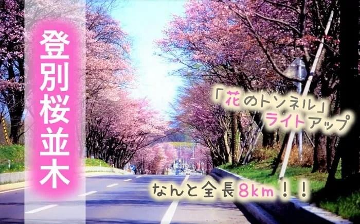 登別桜並木