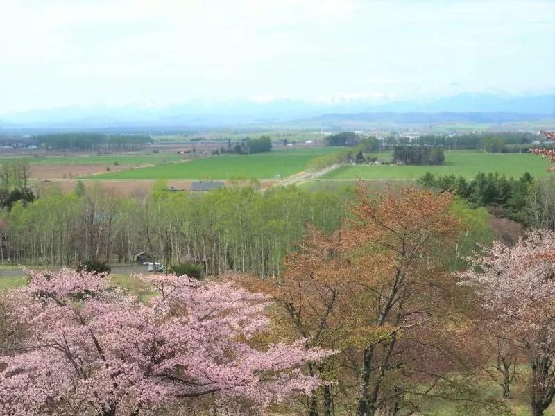 【大樹町】萠和山森林公園(もいわやましんりんこうえん)