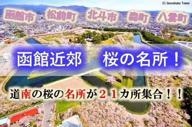 函館市、北斗市、松前町、森町、八雲町 桜の名所