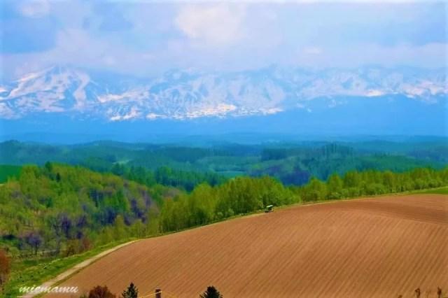 頂上の風景