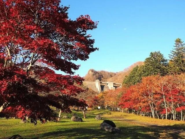 中野ダム公園
