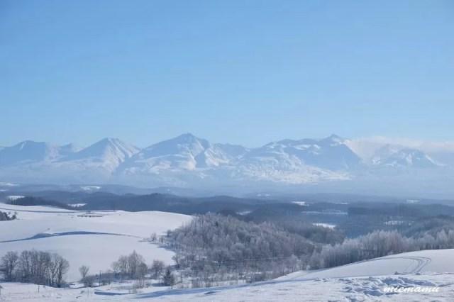 四季彩の丘 冬