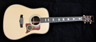Tanglewood TW1000HSRE – full front