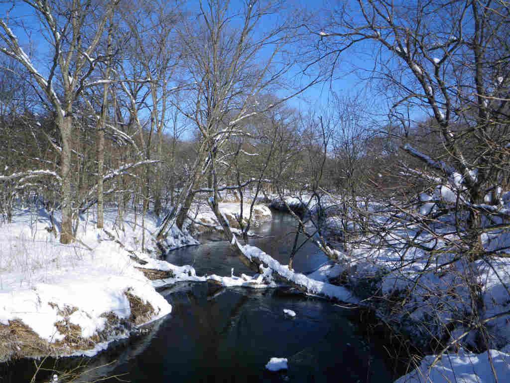 12月極寒真冬の湿原釣行!