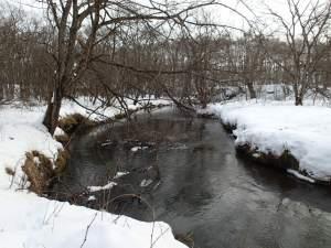 冬の湿原河川