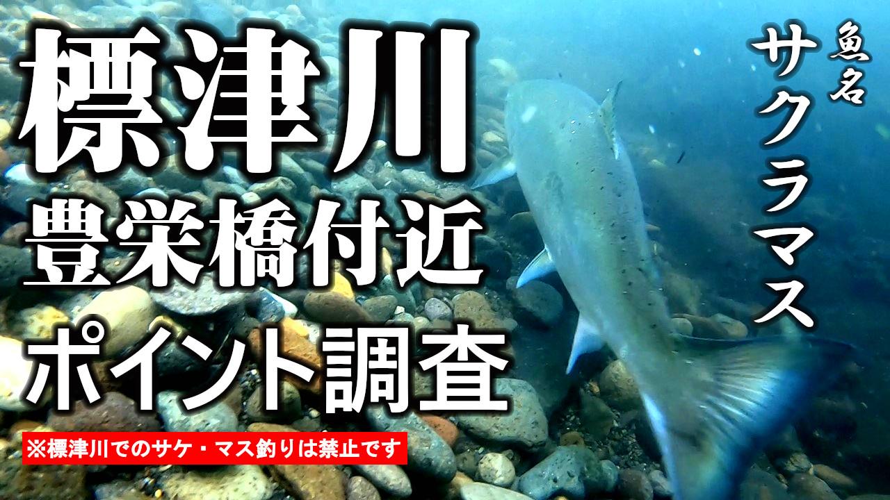 標津川に謎の大物情報!ポイント調査開始!【水中動画撮影】