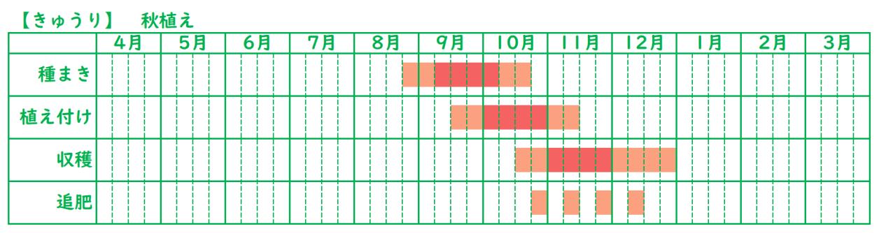 きゅうりの栽培スケジュール_秋植え