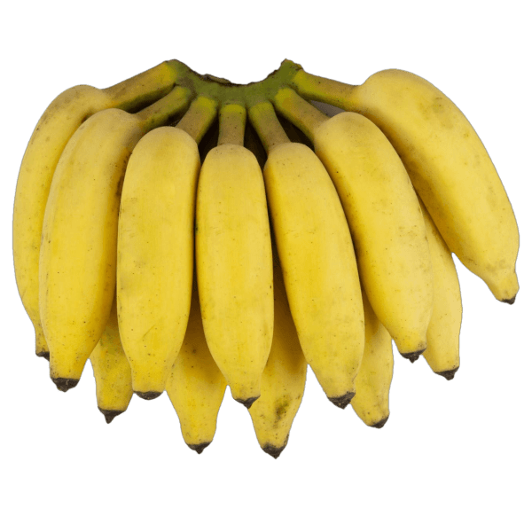woolly_banana