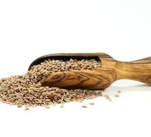 Flohsamenschalen: Mehr als nur eine Nahrungsergänzung